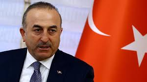 Cyprus' gas should be marketed through Turkey, Cavusoglu says
